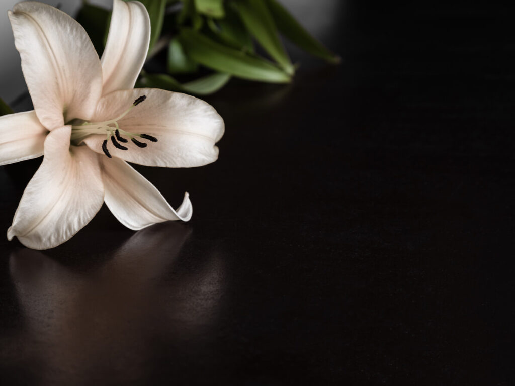Ce flori se aduc la priveghi